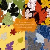Autumn seamless pattern. Royalty Free Stock Photos