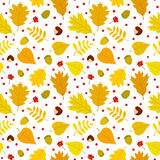 Autumn seamless pattern with rowan berries, leaves, acorn, chestnut. Vector set. Royalty Free Stock Images