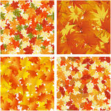 Autumn  Seamless Pattern Set. Seamless Autumn  Leaves Pattern Set. Elegant Design With Maple, Oak and Birch tree leaves With Ideal Balanced Colors. Easy Use For Royalty Free Stock Images