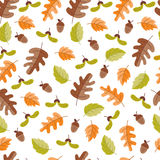 Autumn seamless pattern. Vector autumn seamless pattern with  acorn, oak  leaves. Autumn elements  on white background. Perfect for wallpaper, gift paper Royalty Free Stock Photo