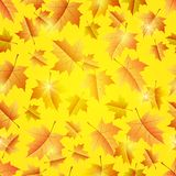 Autumn seamless pattern Stock Images