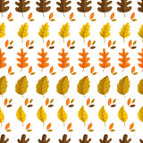 Autumn seamless pattern. Vector autumn seamless pattern with oak and maple leaves. Autumn elements on white background. Perfect for wallpaper, gift paper Vector Illustration