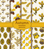 Autumn seamless patterns. Vector set. Royalty Free Stock Photo