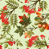Autumn seamless texture Stock Photos