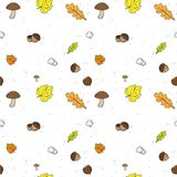 Autumn Seamless vector Background. Seamless vector Background with Fall leaves. fruits and Mushrooms vector illustration