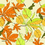 Autumn seamless wallpaper Stock Images