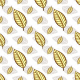 Autumn seamless white floral pattern Royalty Free Stock Images