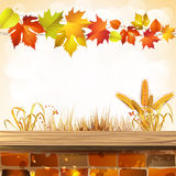 Autumn season. Autumn colorful leaves with brick wall Royalty Free Stock Image