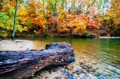 Autumn Season At A Lake Stock Photography