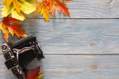 Autumn season background, vibrant maple leaves. Autumn background. Colorful maple leaves and vintage camera on gray rustic wood background with copy space Stock Image