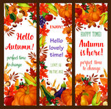 Autumn season banner set with fall harvest frame Royalty Free Stock Photos