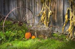 Autumn season barn door Stock Images