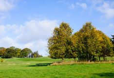 Autumn season. Beautiful autumn day on a golf course Royalty Free Stock Images