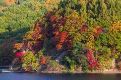 Autumn Season bij de Herfst van Japan Royalty-vrije Stock Fotografie