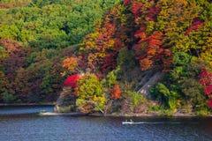 Autumn Season bij de Herfst van Japan Stock Afbeelding