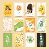 Autumn Season Cards, plantillas coloridas del diseño Fotografía de archivo