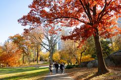 Autumn season at Central Park, new york city stock photography