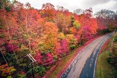 Autumn season and color changing leaves season. Autumn season and color changing leaves  season Stock Photo