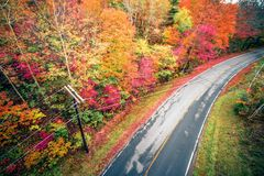 Autumn season and color changing leaves season. Autumn season and color changing leaves  season Stock Photos