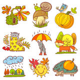 Autumn season Stock Images