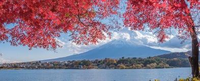 Autumn Season e montagna Fuji nel lago Kawaguchiko immagine stock