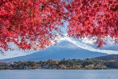 Autumn Season e montagna Fuji nel lago Kawaguchiko immagini stock