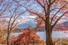 Autumn Season e montagna Fuji nel lago Kawaguchiko immagine stock libera da diritti