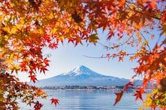 Autumn Season en Berg Fuji met het gelijk maken van licht en rood verlof Stock Foto