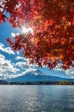 Autumn Season and Fuji mountain at Kawaguchiko lake, Japan Royalty Free Stock Images