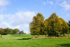 Autumn season on a golf course. Beautiful view on golf course on a sunny autumn day Stock Image