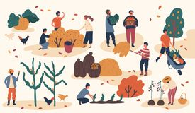 Free Autumn Season Harvest Gathering Flat Vector Illustration. Farmers Working In Field, Stacking Hay. Fruits And Vegetables Royalty Free Stock Photography - 160446947