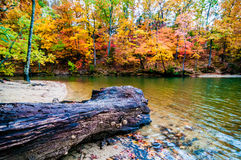 Autumn season at a lake Stock Photography