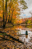 Autumn season at a lake Royalty Free Stock Photography