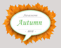 Autumn season 2015 on leaf cloud with gray background Royalty Free Stock Photo