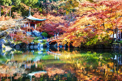 Autumn season,The leave change color of red in Tample japan. Royalty Free Stock Photography