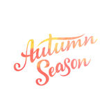 Autumn Season lettering. Hand drawn composition. Sketch, design elements for cards, prints, banners, posters and more. Vector illustration Royalty Free Stock Images