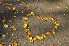 Autumn season. Love heart on the road Royalty Free Stock Images