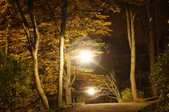 Autumn season at night Royalty Free Stock Images