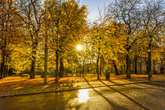 Autumn season in Oslo Stock Photography