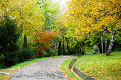 Autumn season in the park Stock Photography