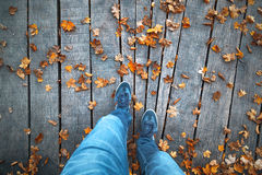 Autumn season park with men walking royalty free stock photography