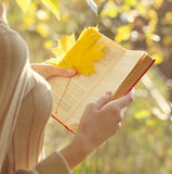 Autumn season, people and reading concept. Woman reads  book in warm sunny autumn day Stock Image
