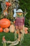Autumn Season Scarecrows Background Kid vänlig nedgånggarnering arkivfoto