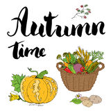 Autumn season set. Hand drawn doodles and lettering vector illustration. Stock Image