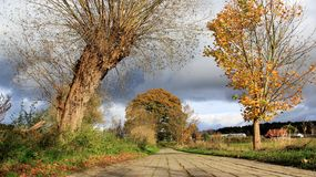 Autumn Season With Small Road In Rural Areas Royalty Free Stock Photos