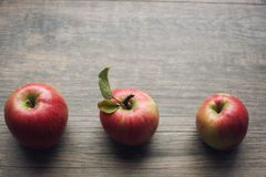 Autumn season still life with three apples over rustic wooden background. Copy space, horizontal. stock image