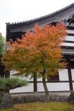 Autumn season at Tofukuji temple Stock Photo
