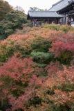 Autumn season at Tofukuji temple Royalty Free Stock Image