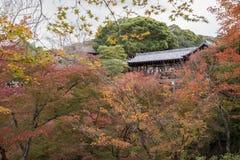 Autumn season at Tofukuji temple Royalty Free Stock Photo