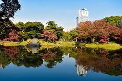 Autumn season Tokyo Koishikawa Korakuen garden red maple tree colorful park stock photos